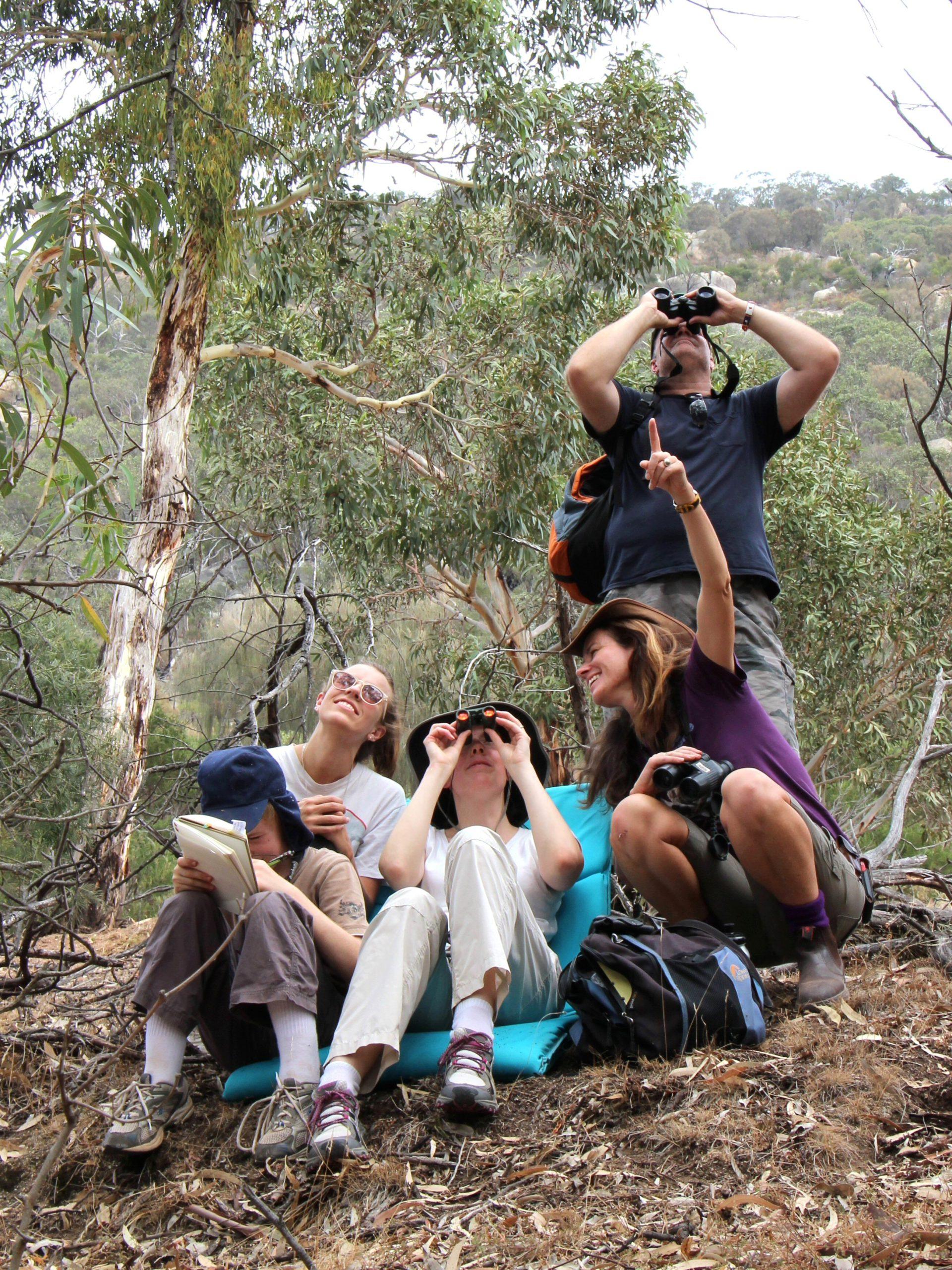 Janine Duffy researching koalas